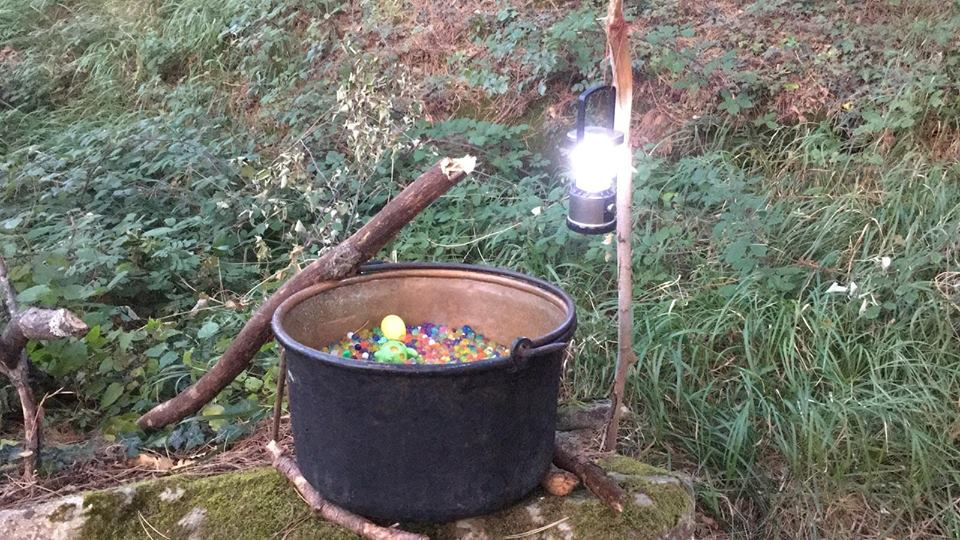 Harry Potter e il bosco dei dissennatori