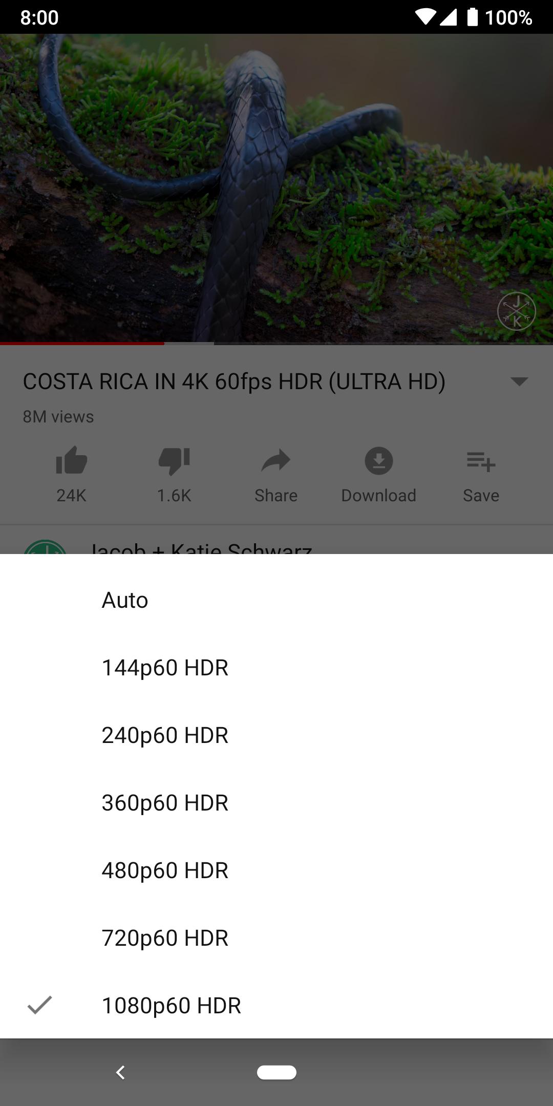 Google Pixel 3 Youtube Playback