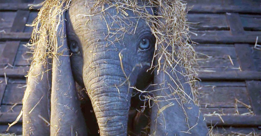 Dumbo, live-action disney. Nuova intervista a elisa toffoli