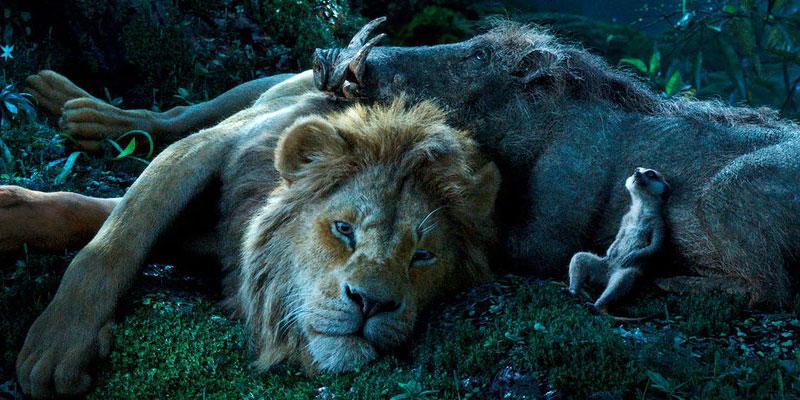 Il Re Leone il live-action Disney di Jon Favreau