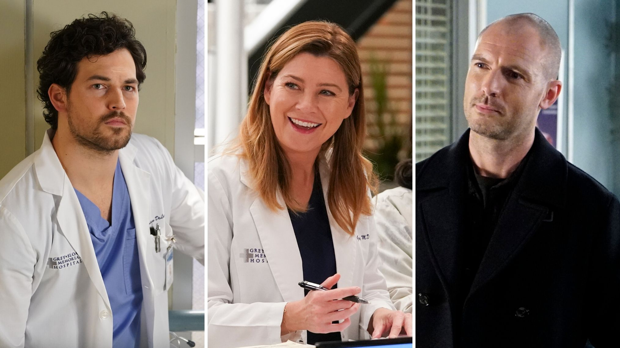 grey's anatomy 17 stagione deluca meredith merluca gianniotti coronavirus mcwidow flood
