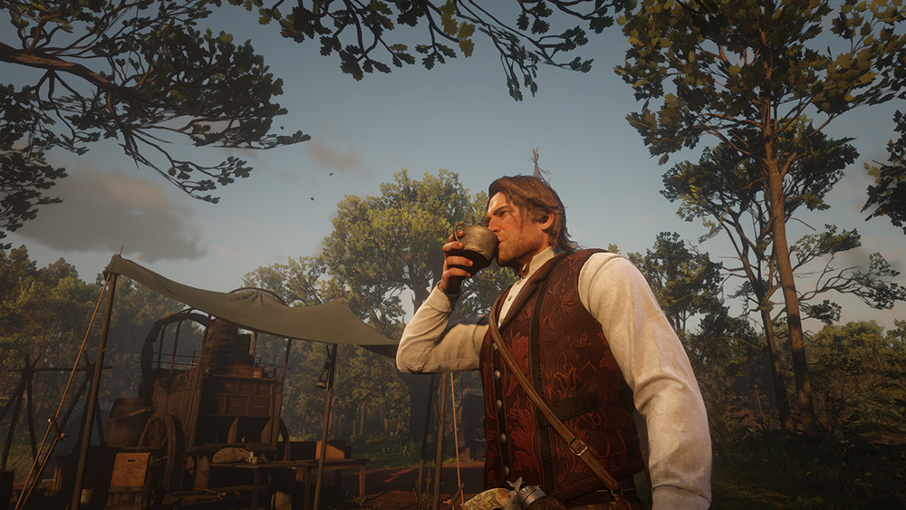 Red Dead Redemption 2 Arthur screen campo