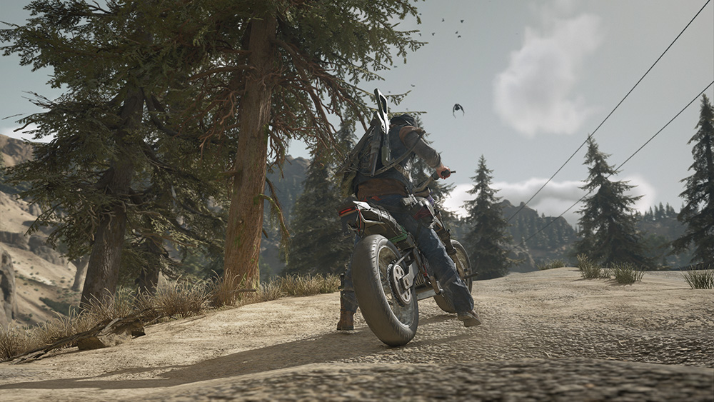 Days Gone scatto 1